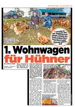 Freilandhaltung von Hühnern auf dem Sonnenhof