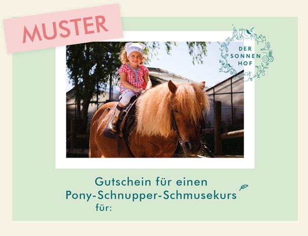Muster Gutschein für Pony-Schnupper-Schmusekurs auf dem Sonnenhof Stuttgart