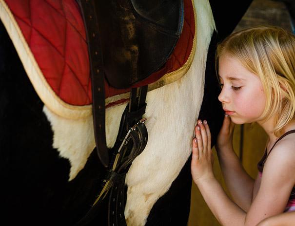 Erlebe unsere Pferde hautnah