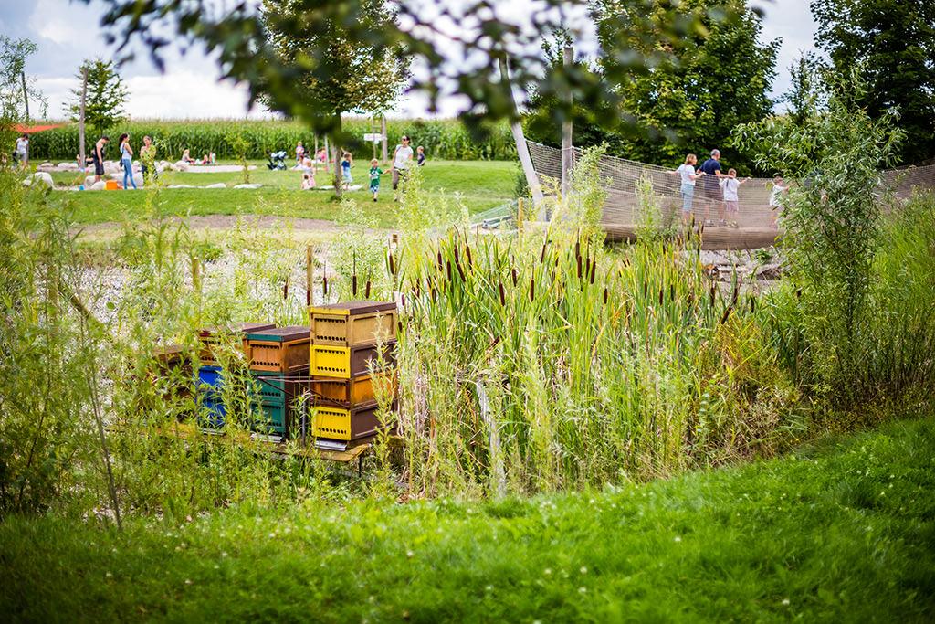 Bienenstöcke beim Biotop